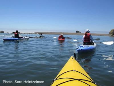 people in kayaks at the mouth of the Russian River